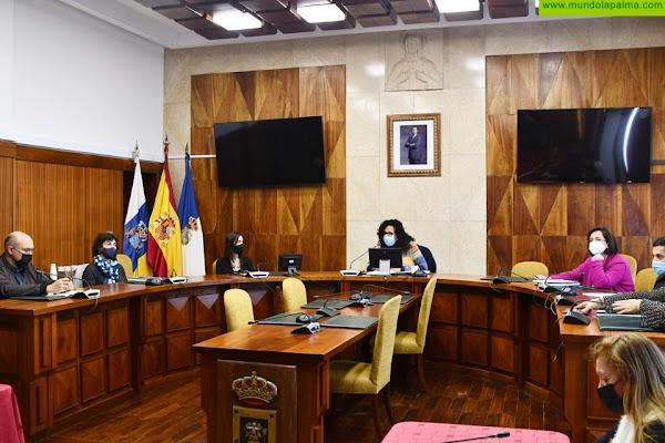 El Cabildo avanza en el Plan Estratégico de Participación Ciudadana