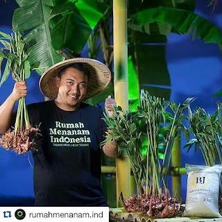 Adi Pramudya sukses budidaya remah rempah indonesia