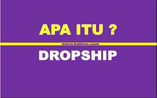 Penjelasan lengkap tentang dropship