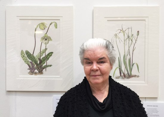Sandra Sanger and two of her paintings of Orchids: Paphiopedilum and Australian Natives
