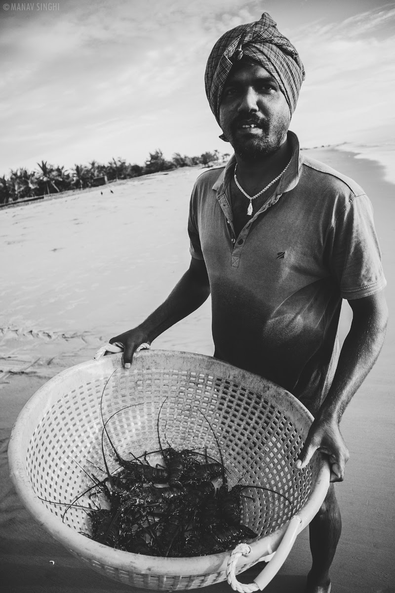 A Local Fisherman showing me Lobsters his catch of day at Fisherman Area near Le Pondy Beach Resort, Pondicherry- 31-Oct-2019