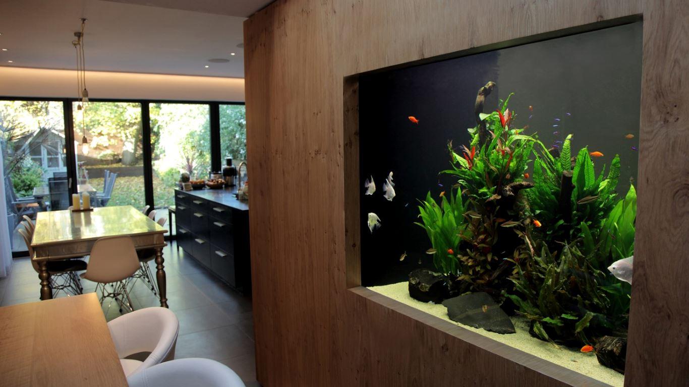 Aquarium kitchen and dining room decor