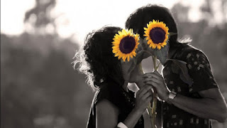 romantic-couple-kissing-cover-with-sun-flower-black-and-white-image.jpg
