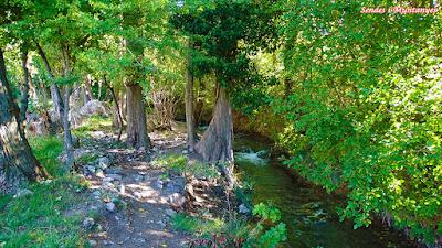 Senda fluvial Desiderio