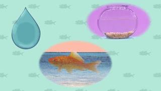 Elmo's World Fish