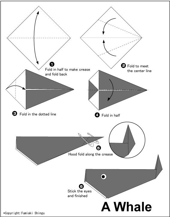 තල්මහකු  හදමු (Origami Whale) - Your Choice Way