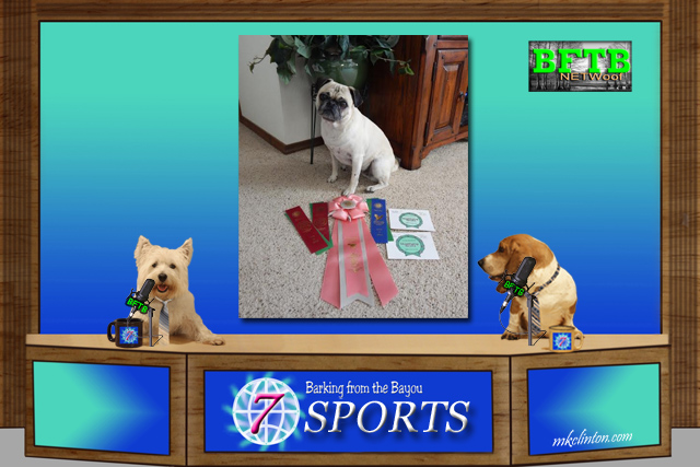 BFTB NETWoof Sports with two dogs anchoring and pug on green screen
