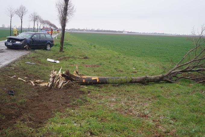 VW Passat kommt von Fahrbahn ab und prallt gegen Baum