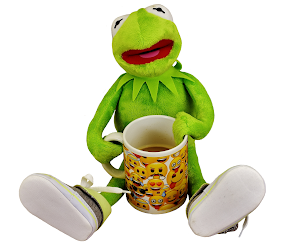 Who is Kermit? A Review of the  Sesame Street Character