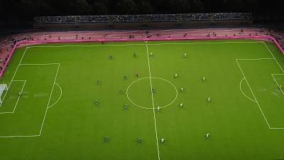 PES 2021 Podillya Stadium Pitch AddOn by Endo