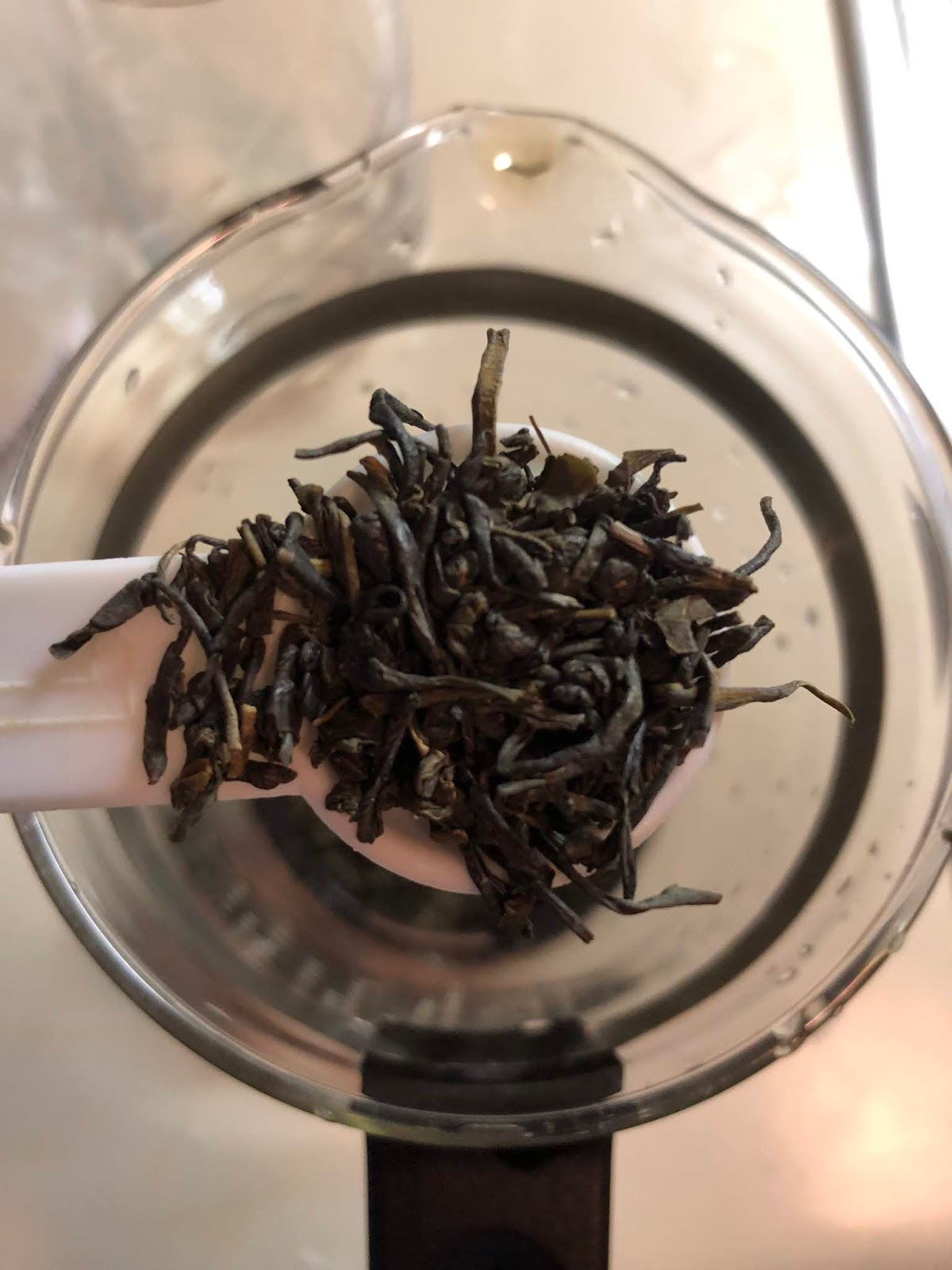 The Nocturnal Aesthetic Tea Review Indonesian Green Tea Upton Tea Imports