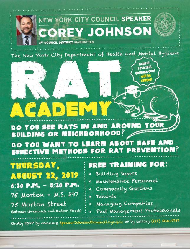 Laura Goggin Photography: Rat Academy!