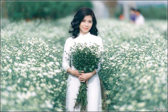 ảnh cô gái áo dài trắng và cúc họa mi