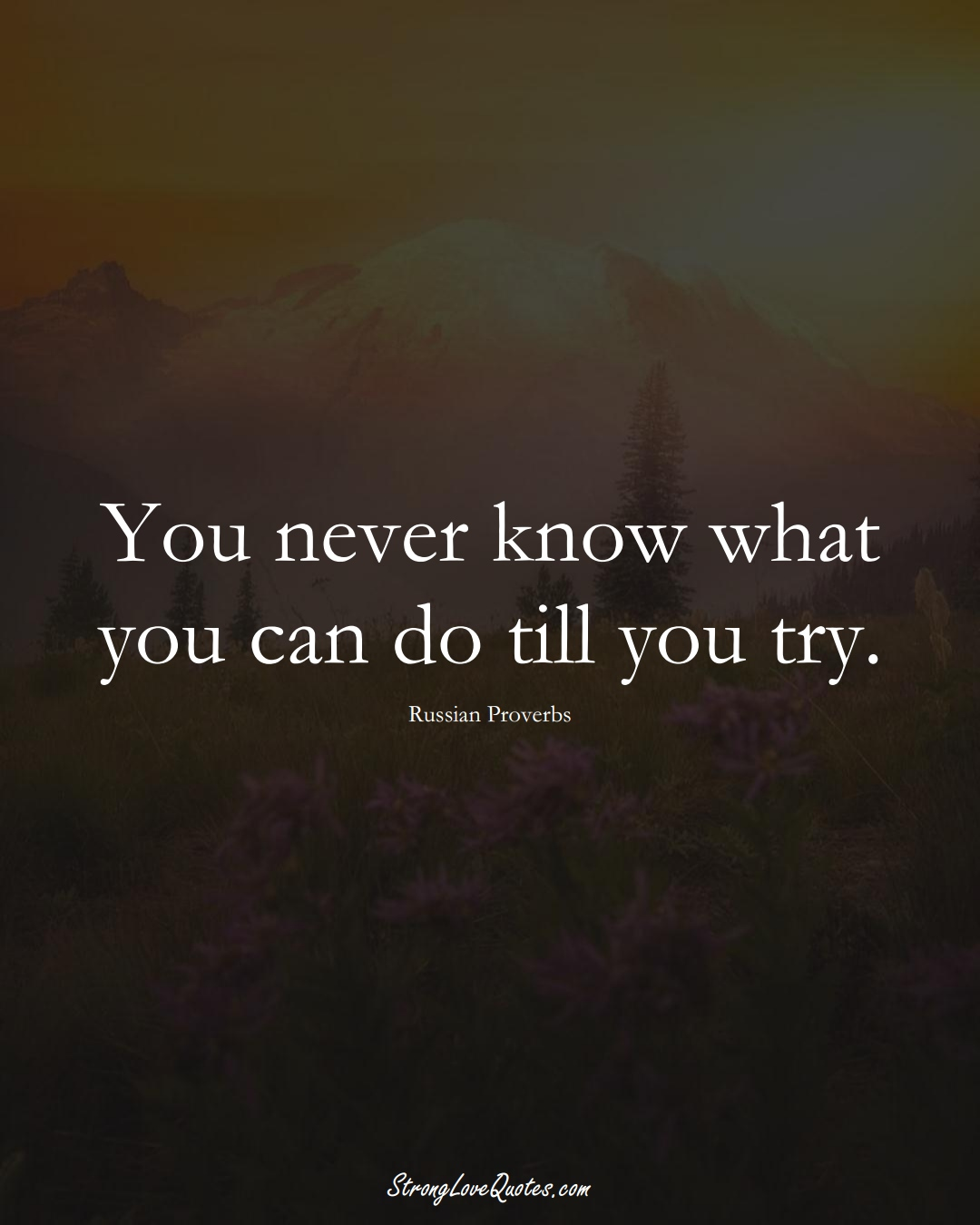 You never know what you can do till you try. (Russian Sayings);  #AsianSayings