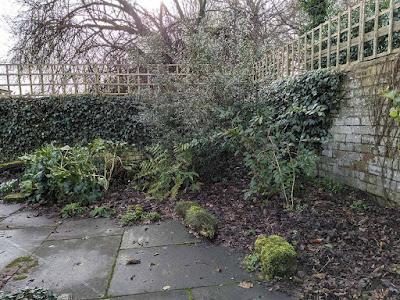 stumpery corner