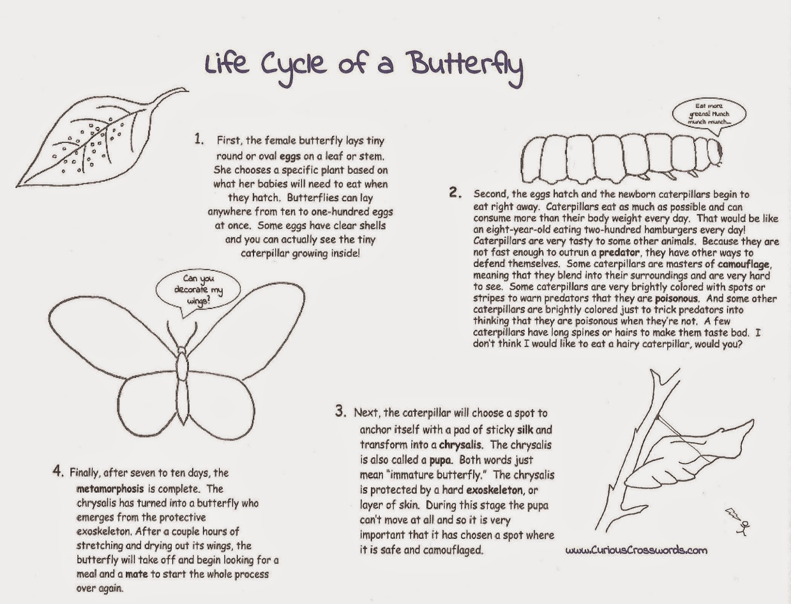 Curious Crosswords: Butterfly Printable with Crossword