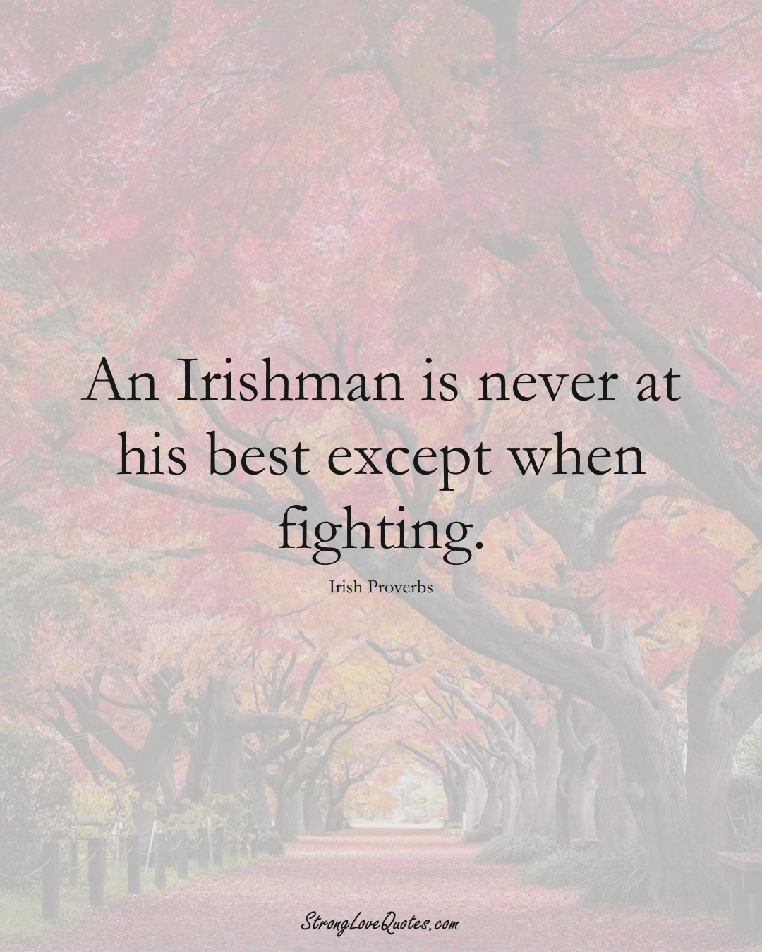 An Irishman is never at his best except when fighting. (Irish Sayings);  #EuropeanSayings