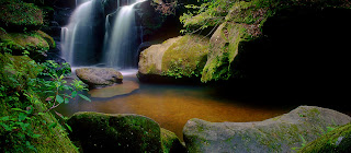 An image of waterfall at Dismals Canyon, Phil Campbell, AL