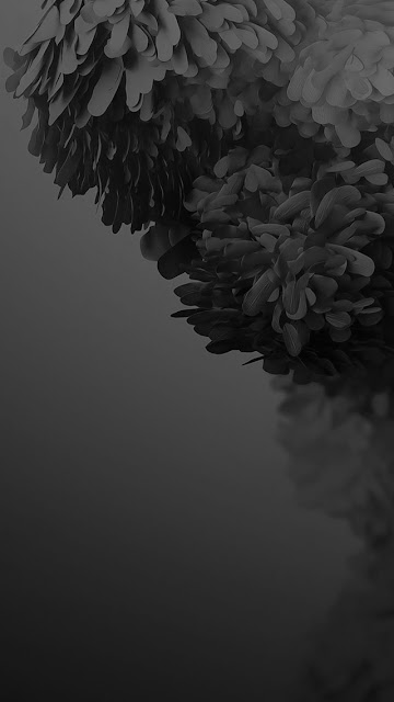 iphone 8 wallpaper black and white iphone  pro max wallpaper black and white