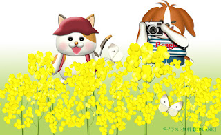 菜の花畑で花と紋白蝶を撮る犬と猫のイラスト