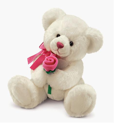 IMAGE WORLD Cute Teddy Bear Beautiful Collection Amp Pictures