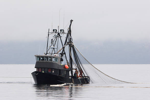 Common Fishing Methods – 10 Effective Ones