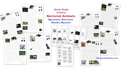 http://homeschoolden.com/big-animal-bundle/
