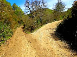 289 Sendero Ruta del Cañón Río Irantzu Tierras de Iranzu Navarra Naturalmente   www.casaruralurbasa.com