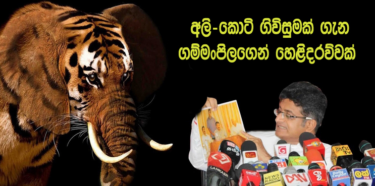 https://www.gossiplankanews.com/2018/12/gammanpila-elephant-tiger.html#more
