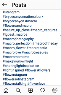 Instagram list of 30 hashtags on a post
