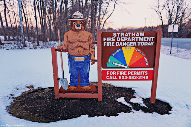 Smokey en el Stratham Hill Park, New Hampshire