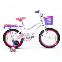 Sepeda Anak Wimcycle Disney Rapunzel CTB 16 Inci Lisensi