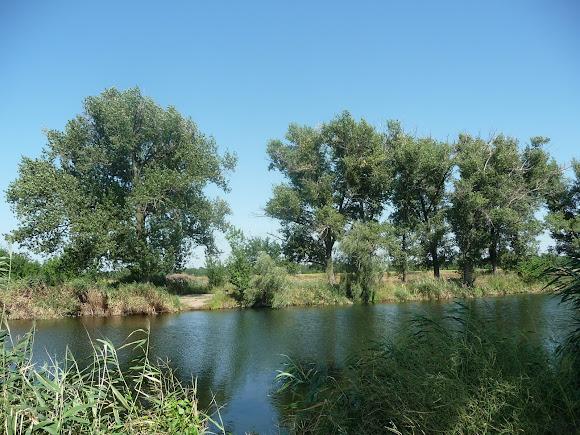 Река Волчья. Посёлок Васильковка