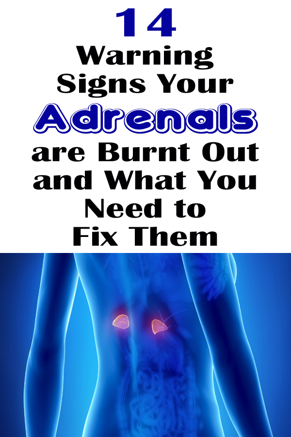 14 Warning Signs Your Adrenals are Burnt Out and What You Need to Fix Them