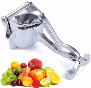 Fruit squeezer