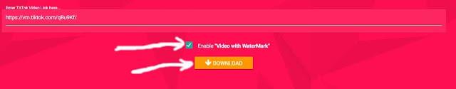 تحميل الفيديوهات من تيك توك