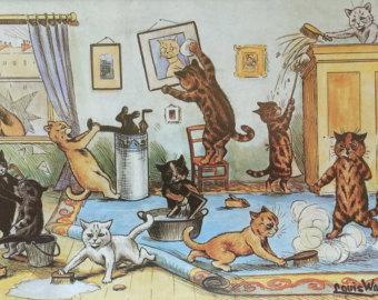 pisicile fac curat