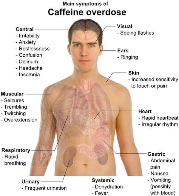 Dr Lui Hock Foong, a gastroenterologist at Gleneagles Hospital, said a typical coffee drinker has nothing to worry about as a lethal dose of caffeine is 10-15g a day, which translates to 100 cups of coffee.