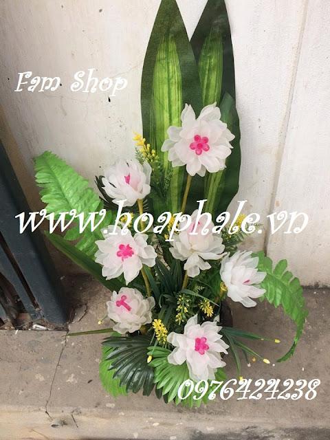 Hoa da pha le o Dong Tam