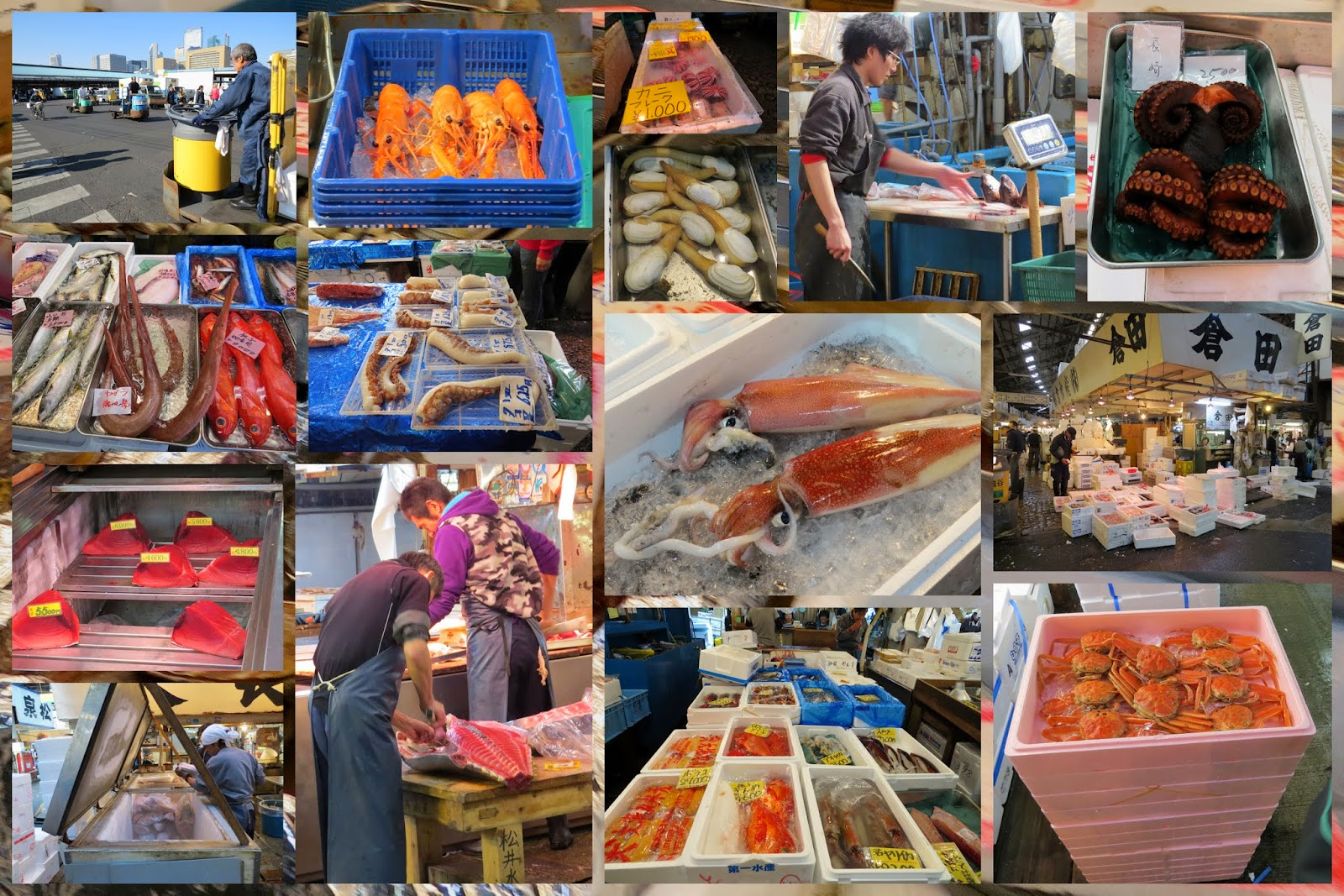 Areas of Tokyo City: Tsukiji Fish Market