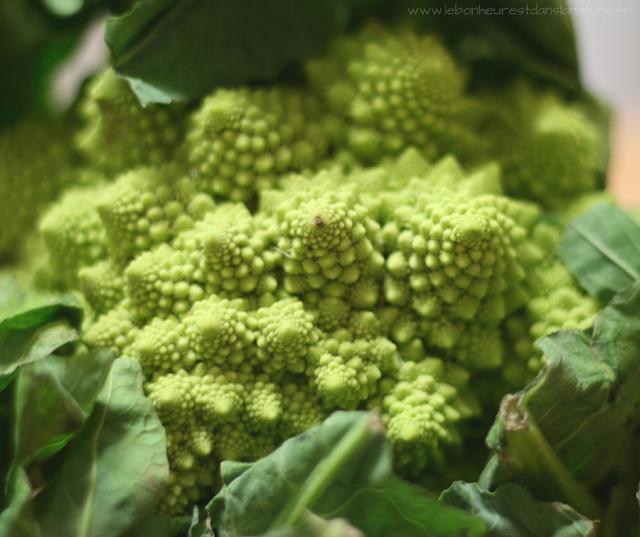 recette vegan végétale végétarienne chou romanesco