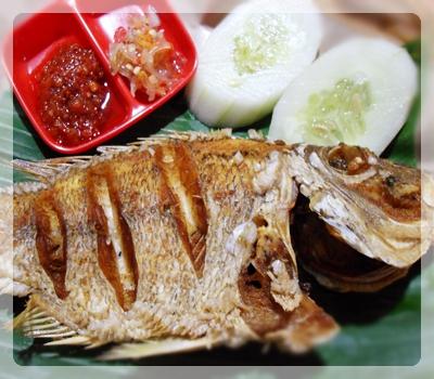 Kakap Bakar Bumbu Bali : Mukbang ikan kakap merah 1,5 Kg ...