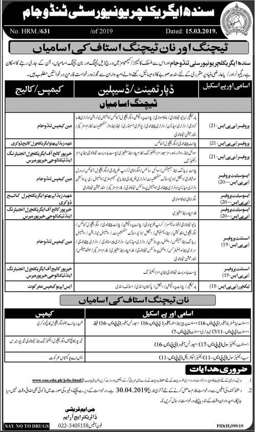 New Govt Jobs in Sindh Agriculture University, Tandojam SAU