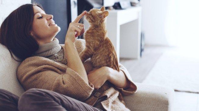 Memelihara Kucing di Rumah