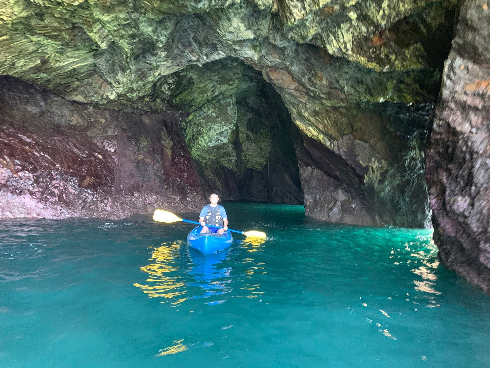 Kayak Mendocino, About   Professionally guided Ocean kayak