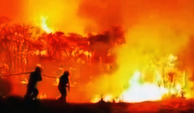 Datos muy positivos sobre el incendio de Gran Canaria