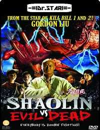 Shaolin vs. Evil Dead (2004) Hindi Dubbed Download 300mb Dual Audio DVDRip 480p