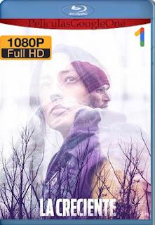 La creciente (2019)[1080p Web-DL] [Latino-Inglés][Google Drive] chapelHD