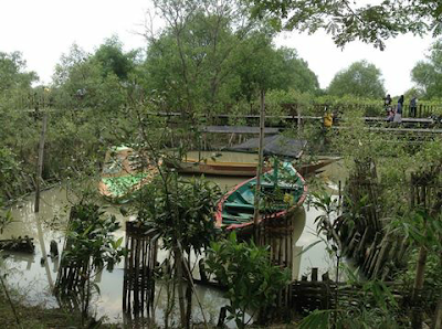 hutan bakau jenis mangrove Surabaya ekowisata keanekaragaman hayati