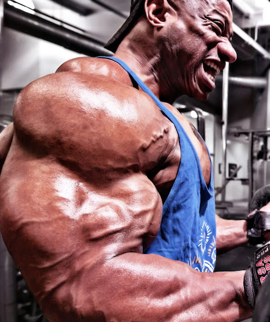 training arms when bulking